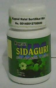 sidqguri untuk asam urat