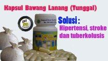 vid_bawanglanang_video