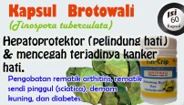 vid_brotowali_video