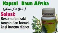 vid_daunafrika_vids