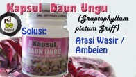 vid_daunungu